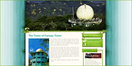 Panama – Bo i torn ovan trädtopparna