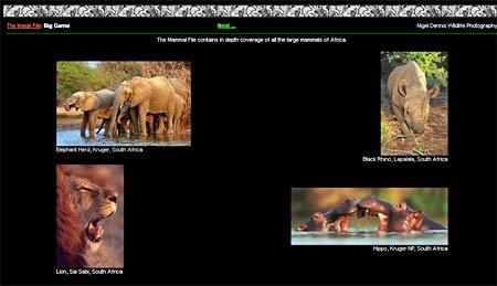 Bilder ger förmak av Afrikasafari