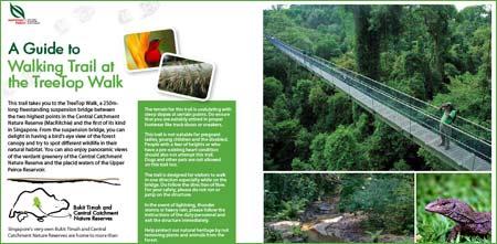 Singapore – Gratis guidade promenader och cykelleder i nationalparker