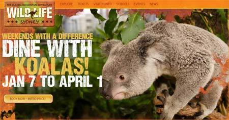 Ät frukost med en koala i Sydney