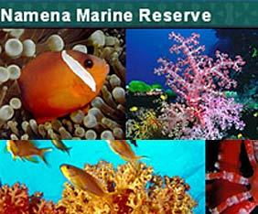 fiji-namena-reef-fram