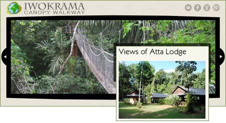 Regnskogsboende och hängbro i Guyana