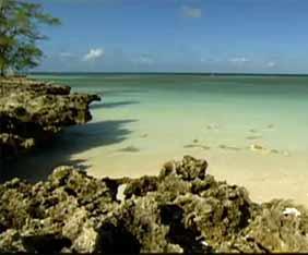 seych-aldabra-fram