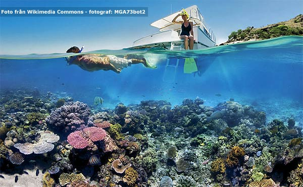 au-great-barrier-reef-mga73