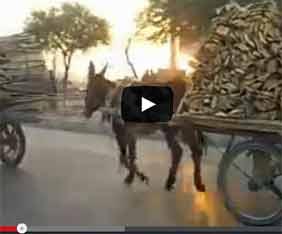 kina-kashgar-market-fram