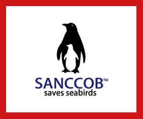sydafrika-volontar-sanccob-fram