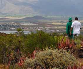 sydafrika-hantam-garden-fra