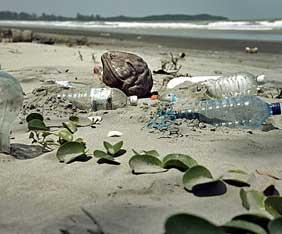 malaysia-smutsig-strand-fra