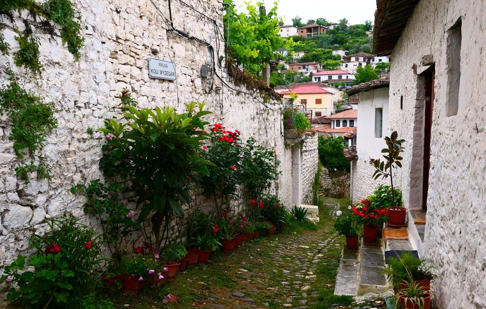 berat-albanien-grand-blommor